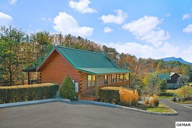 1624 Little Cabin Loop Lil Cajun Cabin, Sevierville, TN 37862 (#215641) :: Colonial Real Estate