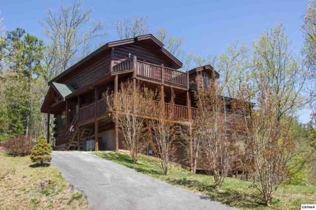 2723 Cats Paw Lane, Sevierville, TN 37876 (#215650) :: Billy Houston Group