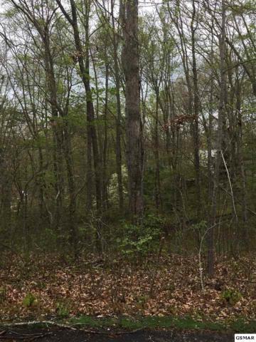 Lot 19 Bootbluff Trail, Dandridge, TN 37725 (#215653) :: Billy Houston Group