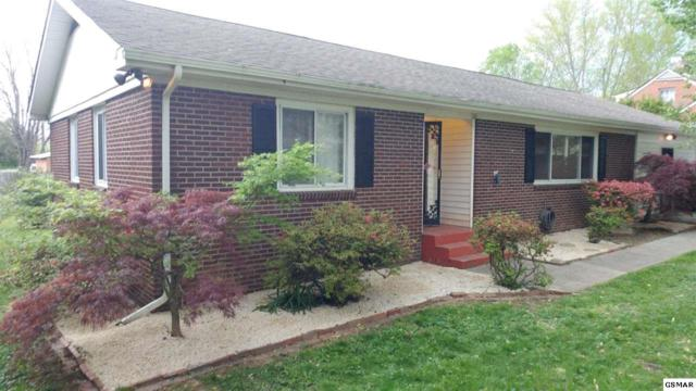 105 Naueda Drive, Knoxville, TN 37912 (#215654) :: Colonial Real Estate