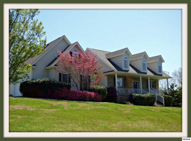 3549 Mountain View Ln., White Pine, TN 37890 (#215656) :: Colonial Real Estate