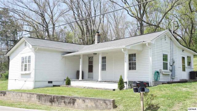 10537 Thorngrove Pike, Strawberry Plains, TN 37871 (#215662) :: Four Seasons Realty, Inc