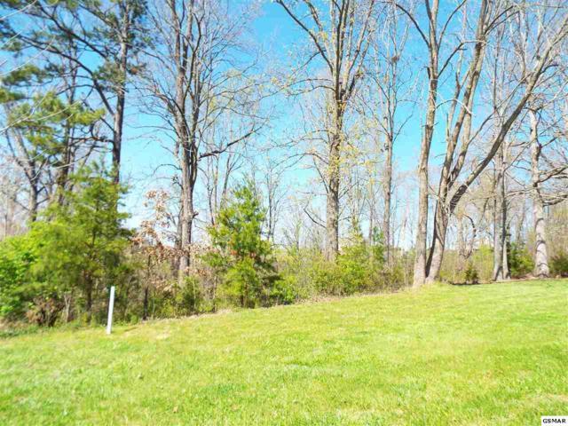 Lot 6 & 7 Farm Road, Newport, TN 37821 (#215665) :: Billy Houston Group