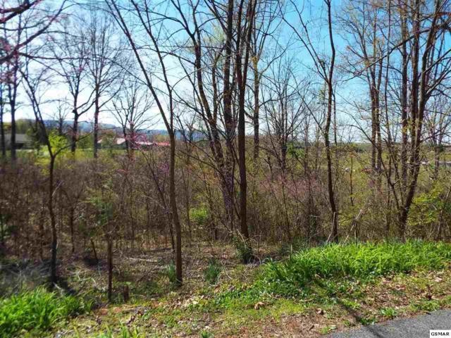Lot 6 Farm Road, Newport, TN 37821 (#215666) :: Billy Houston Group