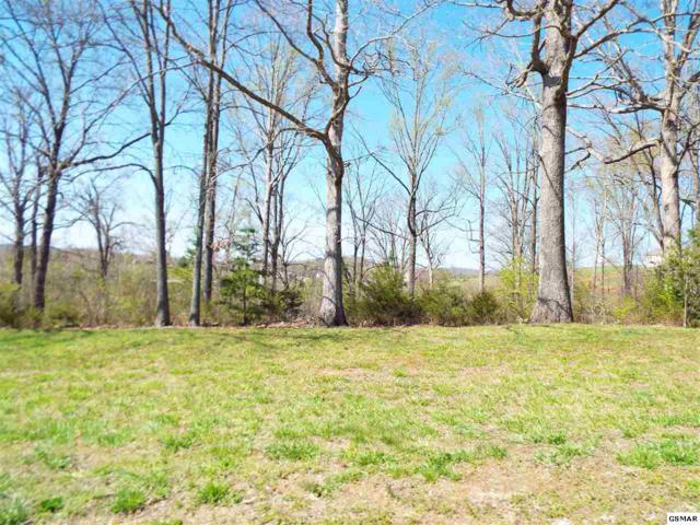 Lot 7 Farm Road, Newport, TN 37821 (#215667) :: Billy Houston Group