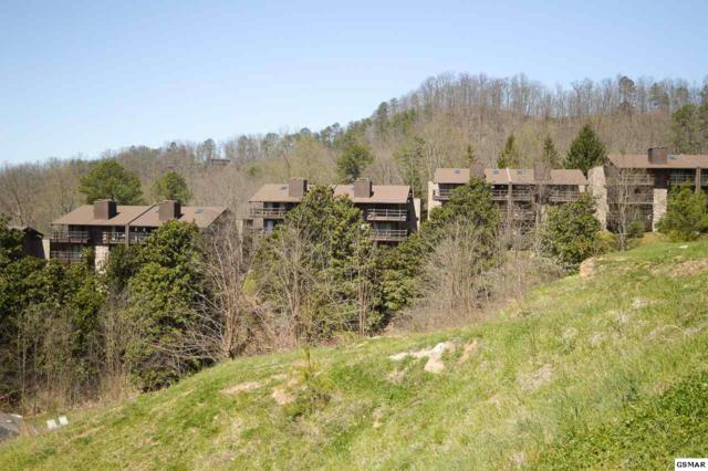 1081 Cove Road Unit 913, Sevierville, TN 37876 (#215681) :: Four Seasons Realty, Inc