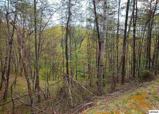 Lot 131 Silver Poplar Ln, Sevierville, TN 37876 (#215686) :: Four Seasons Realty, Inc