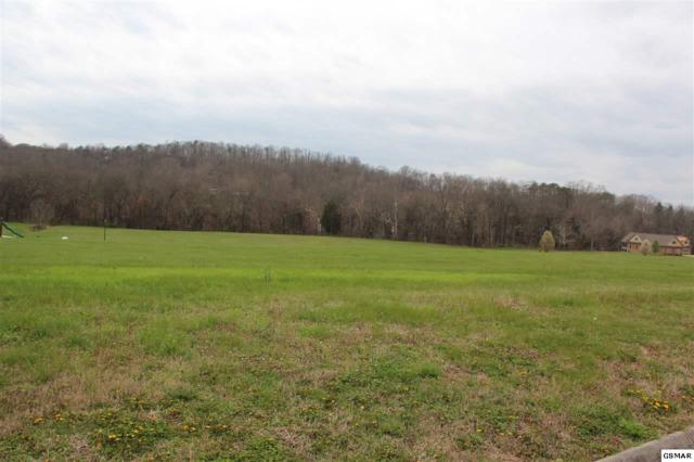 2016 River Mist Circle, New Market, TN 37820 (#215716) :: Billy Houston Group