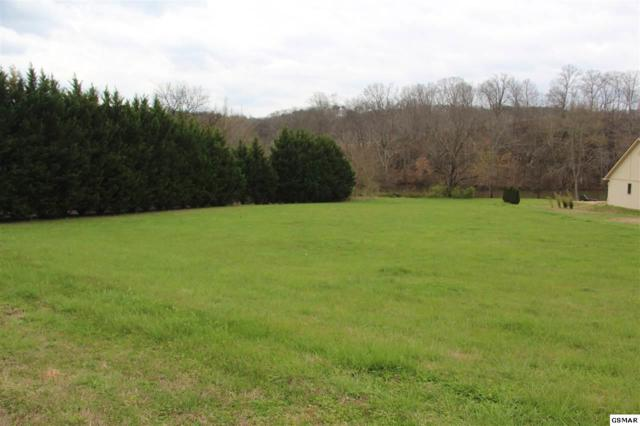 1967 River Mist Circle, New Market, TN 37820 (#215718) :: Billy Houston Group