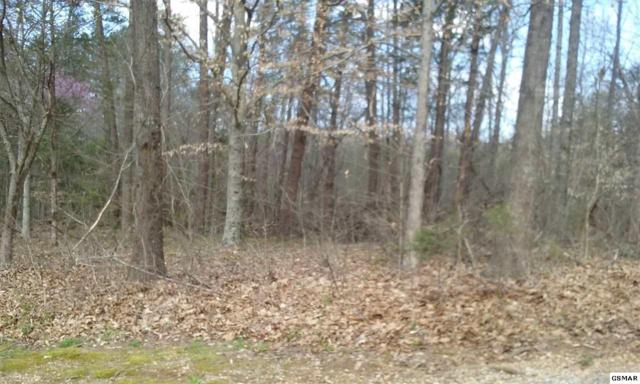 2204 Seaton Springs Road, Sevierville, TN 37862 (#215724) :: Four Seasons Realty, Inc