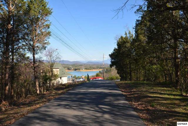 Lot 2-R Mccroskey Lane, Sevierville, TN 37876 (#215736) :: Billy Houston Group