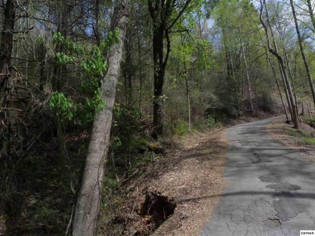 Lot Lot 1 Black Walnut Flats Rd, Sevierville, TN 37862 (#215742) :: The Terrell Team