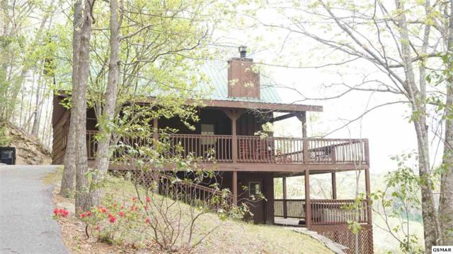 "910 Laurel Lick Road ""Scenic Solitud, Pigeon Forge, TN 37863 (#215744) :: Billy Houston Group"