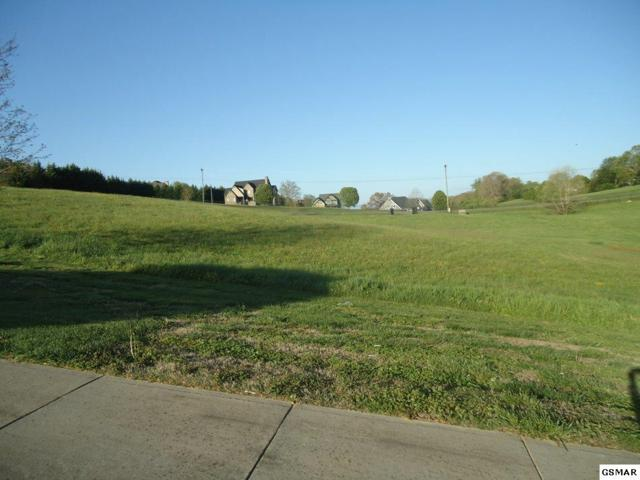 Lot 54 Lexington Park Ave, Sevierville, TN 37876 (#215747) :: Billy Houston Group