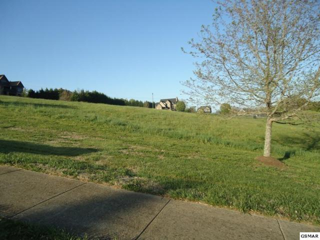 Lot 55 Lexington Park Ave, Sevierville, TN 37876 (#215748) :: Billy Houston Group