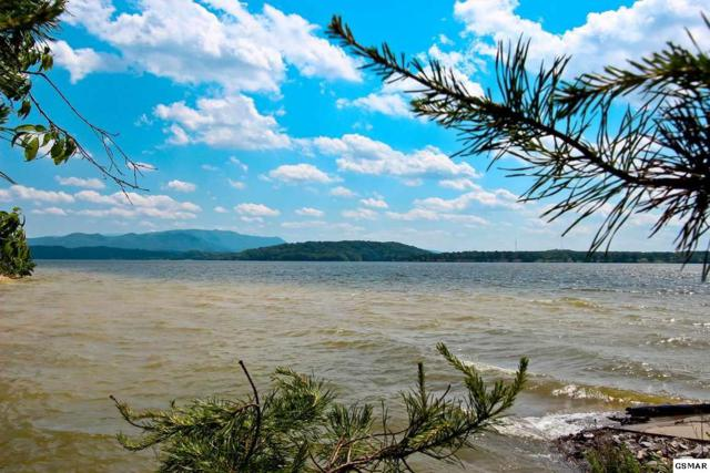 3.21 Acres Kammann & Traveler Cove, Baneberry, TN 37890 (#215765) :: Colonial Real Estate