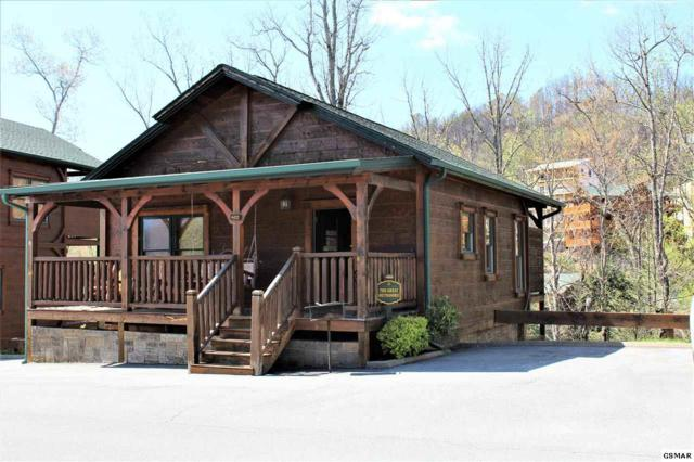 832 Great Smoky Way, Gatlinburg, TN 37738 (#215788) :: Four Seasons Realty, Inc