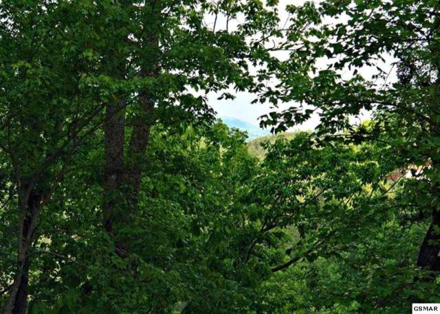 Lot 22 Sugar Maple Loop, Sevierville, TN 37862 (#215790) :: Billy Houston Group