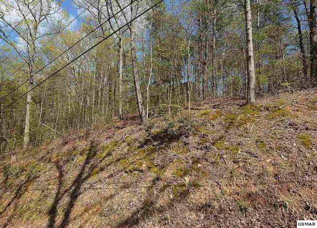 Lot 194 & 195 Ski View Ln, Sevierville, TN 37876 (#215792) :: Colonial Real Estate