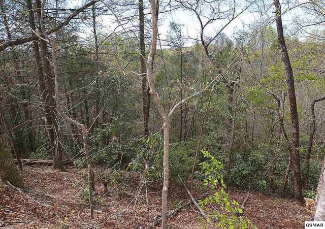 Lots 5,6,7 Shielview Est Lot 6 & 7 Ownby, Gatlinburg, TN 37738 (#215794) :: Billy Houston Group
