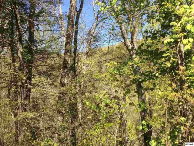 Lot 26 Wildcat Ridge Rd Lot 26, Sevierville, TN 37862 (#215796) :: Colonial Real Estate
