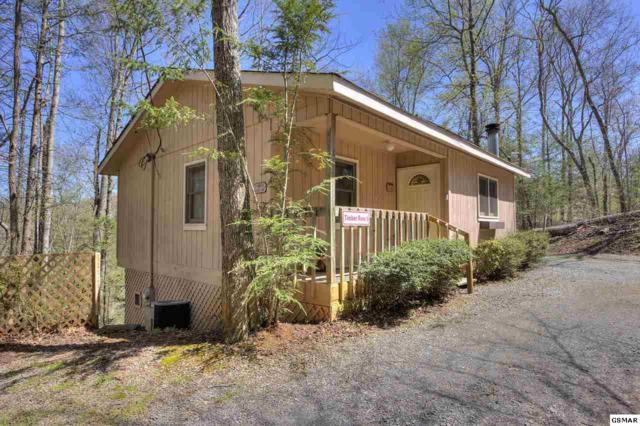 4042& 4044 Mccarter Circle, Sevierville, TN 37876 (#215839) :: Four Seasons Realty, Inc
