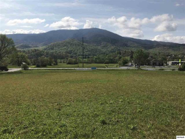 Lot 7 Wears Valley Rd, Sevierville, TN 37862 (#215841) :: Billy Houston Group