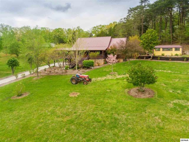 239 Lenz Drive, Kodak, TN 37764 (#215856) :: Colonial Real Estate
