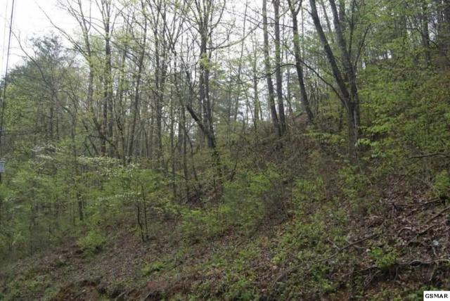 Lot# 16 Eagle Pointe Way, Sevierville, TN 37876 (#215889) :: Billy Houston Group