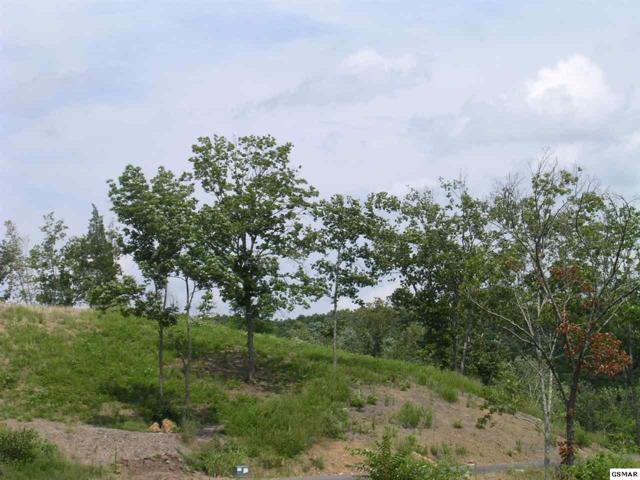 Lot 12 Stone Cove Way, Dandridge, TN 37725 (#215895) :: Billy Houston Group