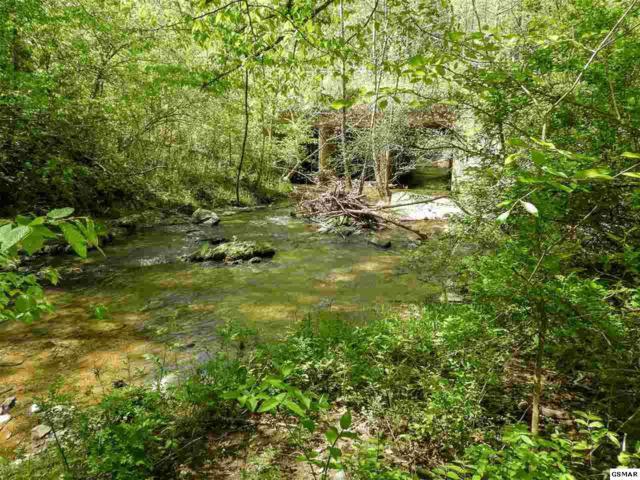 Lot 7 Old Birds Creek Rd, Sevierville, TN 37876 (#215902) :: Billy Houston Group