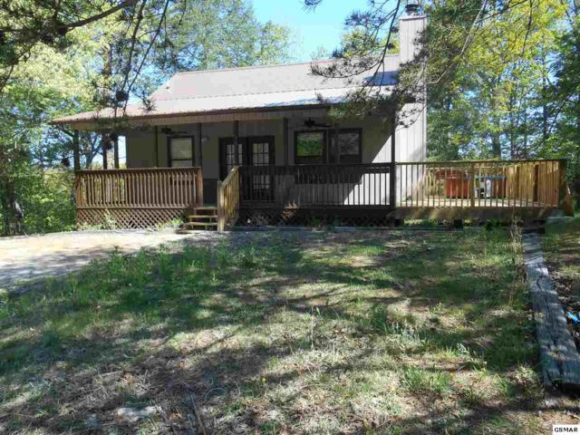 647 Oaks View, Pigeon Forge, TN 37863 (#215904) :: Colonial Real Estate