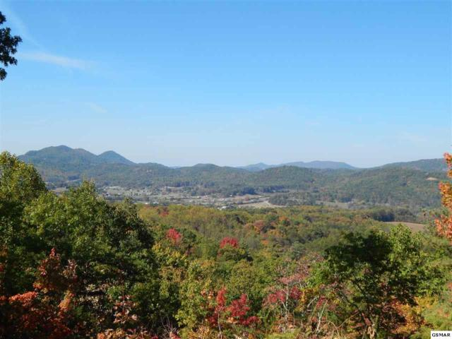 Lot 3 Lexy Lane, Sevierville, TN 37862 (#215928) :: Billy Houston Group