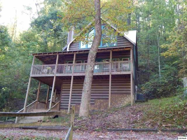 3533 Wolf Way, Sevierville, TN 37862 (#215929) :: Colonial Real Estate