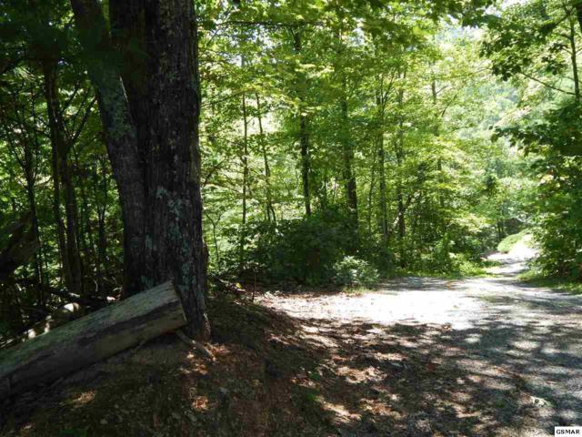Lot 20 Brooke Hollow Lane, Sevierville, TN 37862 (#215931) :: Billy Houston Group