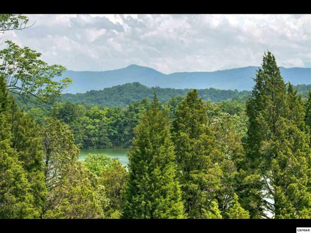 3903 Island View Rd, Sevierville, TN 37876 (#215961) :: Billy Houston Group
