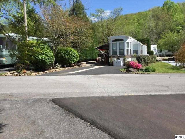 Lot#208 4229 E Parkway East Parkway, Gatlinburg, TN 37738 (#215978) :: Four Seasons Realty, Inc