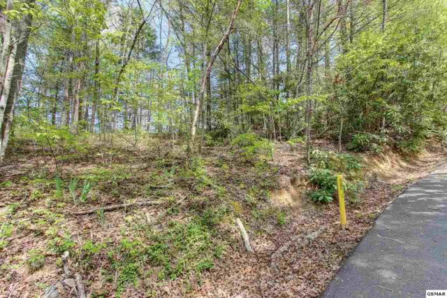 Lot 42 Ownby Drive, Gatlinburg, TN 37738 (#215984) :: Billy Houston Group
