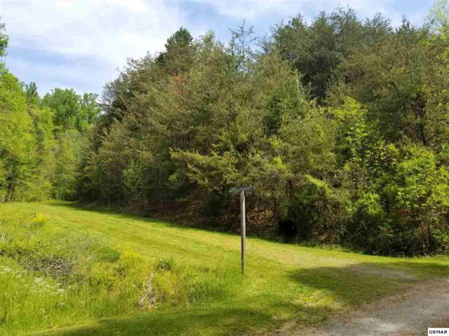 Lot Lot 6 Amis Way, Sevierville, TN 37876 (#215990) :: Billy Houston Group