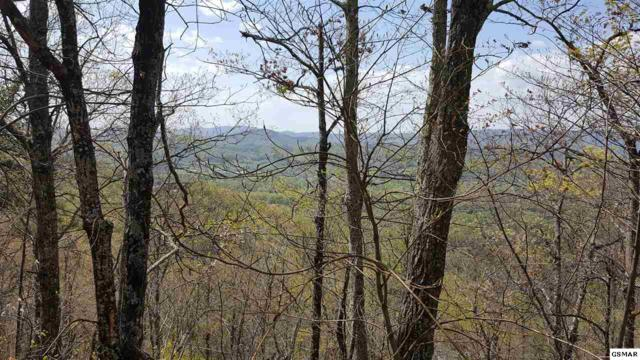 Tract 21 Cove Mountain Road, Sevierville, TN 37862 (#215995) :: Billy Houston Group