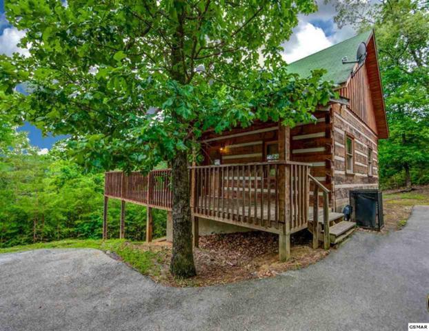 1540 Bluff Ridge Rd, Sevierville, TN 37876 (#216000) :: Billy Houston Group