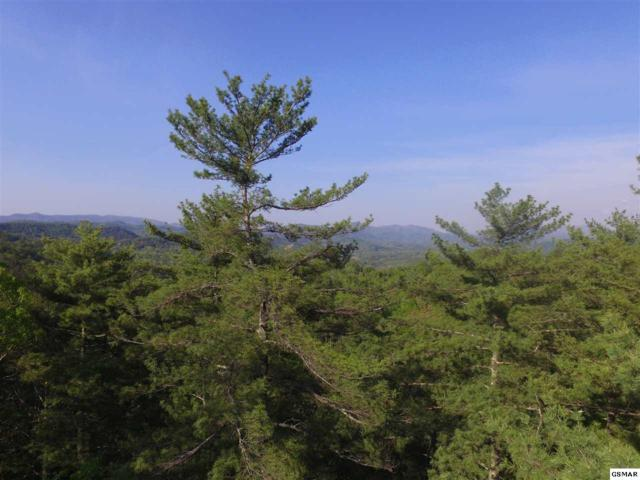 Lot 20 Slate Quarry Rd, Townsend, TN 37882 (#216006) :: Billy Houston Group