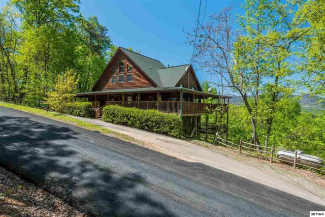 3306 Shagbark Hickory Ridge, Sevierville, TN 37862 (#216019) :: Billy Houston Group