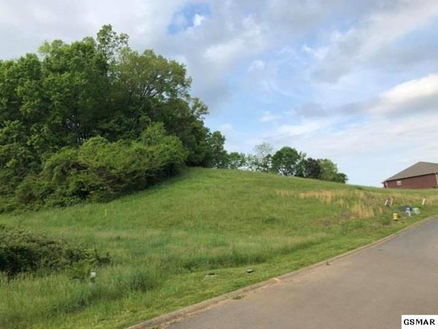Lot 16 Sierra Lane, Sevierville, TN 37862 (#216048) :: The Terrell Team
