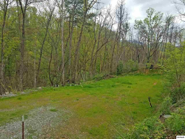 424 Troy Dr, Pigeon Forge, TN 37863 (#216070) :: Billy Houston Group