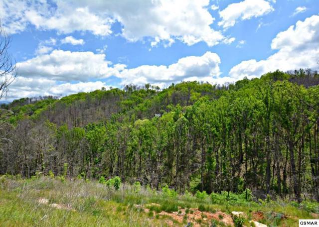 646 Pinecrest Drive, Gatlinburg, TN 37738 (#216076) :: Four Seasons Realty, Inc