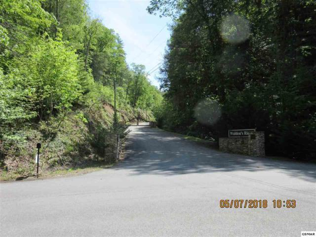 Lot 57 Mountain Holly Way, Sevierville, TN 37862 (#216077) :: The Terrell Team