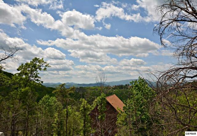 2317 Fox Berry Way, Sevierville, TN 37876 (#216078) :: Colonial Real Estate