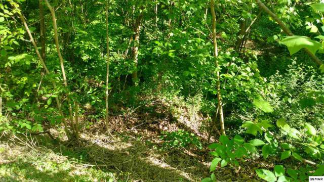 Lot 67 Greenwood Way, Pigeon Forge, TN 37863 (#216097) :: Colonial Real Estate