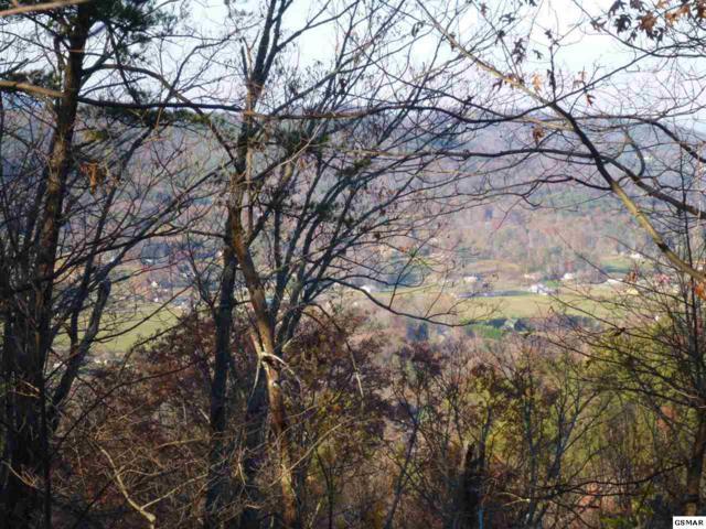 High Ridge Way, Sevierville, TN 37862 (#216110) :: Billy Houston Group